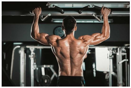 Todo Sobre las Mejores Máquinas del Gym para Mejorar el Tren Superior del Cuerpo