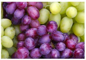 Peligros de las uvas transgénicas