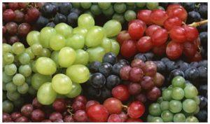 Ventajas de las uvas transgénicas