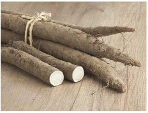 Beneficios de la raíz de bardana para la salud